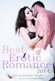 Cover for Best Erotic Romance 2014. Features a man and woman embracing. The man only has on white underwear and the woman is wearing a sheer black bra and panties.